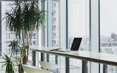 Wirtualne biuro, czym jest i dlaczego potrzebujesz go swojej firmy?